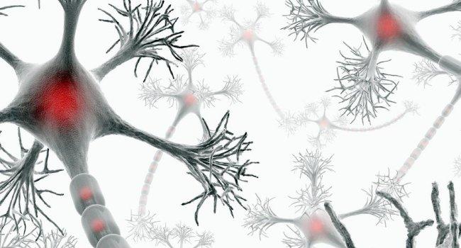 Простой тест на чтение может предсказать болезнь Альцгеймера