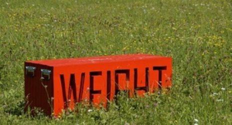 Каждый третий американец страдает ожирением или имеет избыточный вес