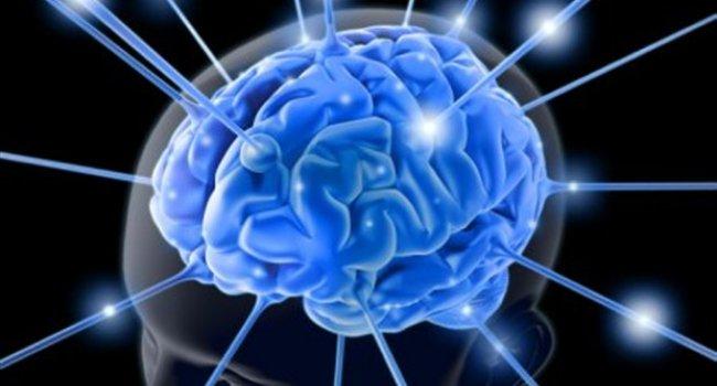 Кишечная микрофлора может стать причиной рассеянного склероза