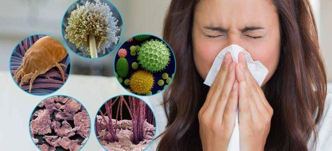 Аллергия на пыль: как проявляется?