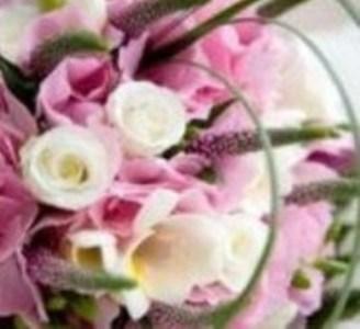 Цветы – украшение жизни