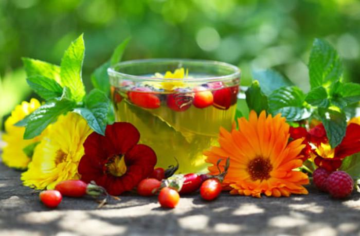 Сколь полезны травяные чаи для женщин?