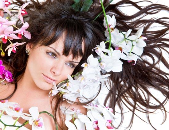 Красота: Секреты красивых и здоровых волос