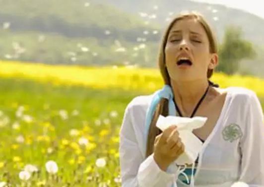 В чем опасность пыльцевой аллергии